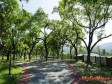 提升綠地 台中南區打造共融式公園