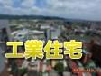 內政部:督促地方政府積極查察「工業住宅」
