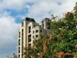 天母「英格蘭莊園」風水名人巷,聚集隱富族群