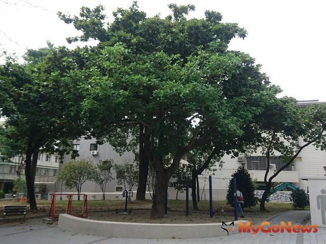 台中西屯區大仁公園景觀改造 設施減量保留大片綠地