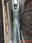 台中市 汙水下水道建設接管戶逾15萬