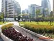 得獎囉!北市內科誕生新綠洲、士林活化老公園