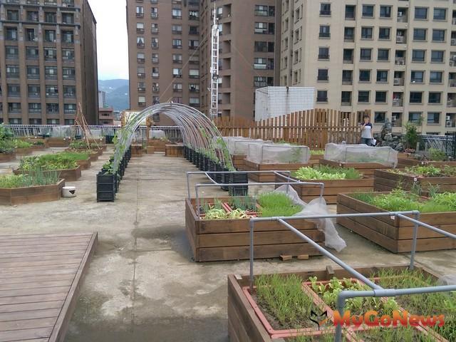 「你家蓋綠屋頂,我來補助!」工務局啟動2017年度建築物立體綠化及綠屋頂補助