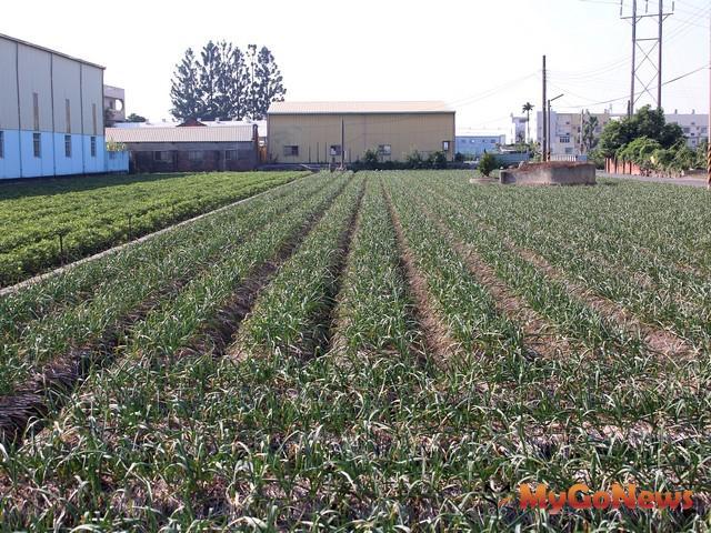 去年0520後農地新增違法工廠「全拆」