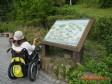 雙重點!營建署持續推動都市公園無障礙環境